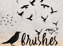 飞翔的乌鸦鸟类剪影图形Photoshop笔刷素材下载