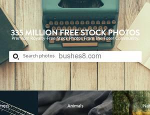免费商用图库 Fote:收录超过3亿张的相片素材网站!授权模式 CC0
