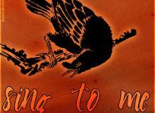 14种版刻鸟造型图案PS笔刷下载
