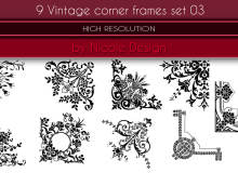 9种欧式富丽堂皇的印花图案PS花纹装饰笔刷