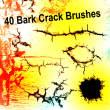 40种树皮裂分、树皮纹理图案Photoshop笔刷素材下载