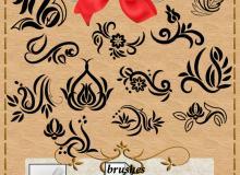 手绘装饰性花纹图案Photoshop笔刷素材下载
