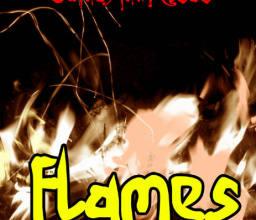燃烧的火焰效果Photoshop笔刷素材下载