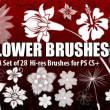 植物花纹图案Photoshop印花花纹笔刷