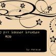 10种植物枝条式艺术花纹图案Photoshop笔刷下载