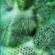 爬行动物鳞甲纹理图案Photoshop笔刷下载