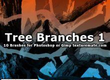 10种高清树干、树木、枯树图像Photoshop笔刷下载