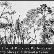 10种野花野草图案Photoshop笔刷素材下载