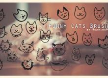手绘卡通猫咪头像PS照片美化装饰呆萌笔刷
