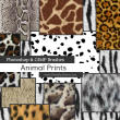 动物皮毛、斑纹斑点纹理、豹纹毛发Photoshop笔刷纹理素材