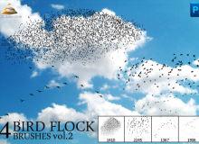鸟群、飞鸟梯队背景Photoshop笔刷素材下载