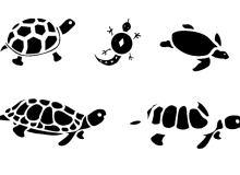 可爱卡通海归、乌龟、王八剪影图形Photoshop乌龟笔刷