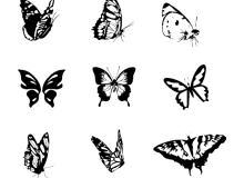 蝴蝶图形、版刻式蝴蝶花纹PS笔刷