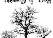 大树、枯树、魔鬼树、冬季大树Photoshop树木笔刷