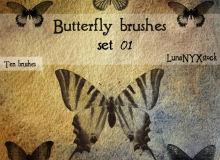 蝴蝶图案、蝴蝶标本素材Photoshop笔刷下载