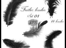 羽毛、鸿毛、翅膀羽毛素材PS笔刷下载(JPG素材格式)