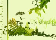 各种热带雨林的植物叶子图形剪影Photoshop笔刷下载