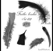 15种高清动物羽毛、鸟类羽毛素材Photoshop笔刷素材下载