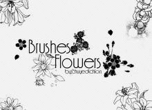 漂亮的手绘艺术线条花纹图案、鲜花花朵Photoshop笔刷下载