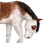 免费的马鬃PS笔刷素材下载