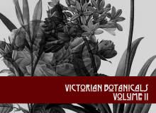 手绘鲜花图案植物素材PS笔刷下载