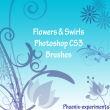 漂亮优美的植物鲜花花纹图案PS笔刷下载