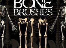 恐怖骷髅、遗骸、人体白骨PS笔刷素材
