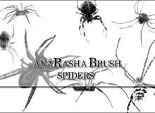恐怖的真实蜘蛛图形PS笔刷素材下载