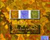 3种混沌琉璃背景图案Photoshop填充图案底纹素材 Patterns 下载