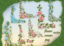 美丽的鲜花花朵边角图案PS笔刷下载(PNG透明格式)
