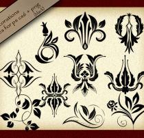精美的经典植物印花图案饰品PS笔刷素材(PNG透明格式)
