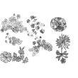 花式鲜花印花图案PS笔刷下载