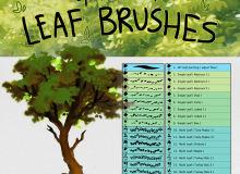 高品质树叶、叶子图形PS笔刷下载