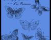 漂亮的手绘蝴蝶图案PS笔刷素材