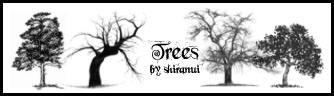 大树剪影造型、素描式树木PS笔刷下载