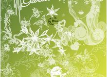 漂亮的蝴蝶花纹、女性印花装饰PS笔刷下载