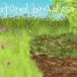 免费的自然插画笔触PS素材下载