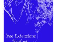 树枝、树荫剪影效果PS笔刷下载