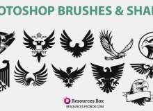 老鹰徽章、白头鹰图案PS笔刷素材下载