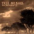 非洲丛林大树、树木、枯树剪影图像PS笔刷下载