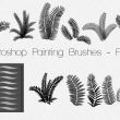 蕨类植物叶子图案PS高清笔刷素材