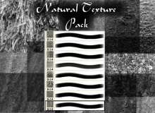 天然落叶、树叶、枯叶纹理、针松林背景PS笔刷
