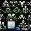 高贵的贵族印花图案PS植物花纹装饰笔刷