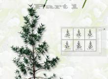 树木、小树、装饰树枝图案photoshop自定义形状素材 .csh 下载