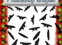 飞翔的蝴蝶、飞蛾剪影图形PS笔刷下载(csh格式,自定义形状)