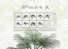 针松叶植物图案PS笔刷下载(csh格式,自定义形状)