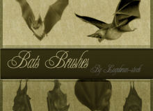 吸血蝙蝠、恐怖蝙蝠Photoshop笔刷下载