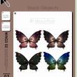 七彩蝴蝶标本图案PS笔刷素材下载(PNG图片素材)