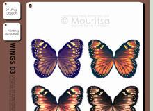 七彩蝴蝶翅膀图案PS笔刷免费下载(PNG透明图片格式)
