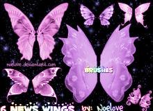 6种蝴蝶昆虫翅膀PS笔刷下载
